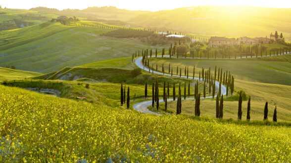 Почему идея инвесторской визы в Италии хорошая