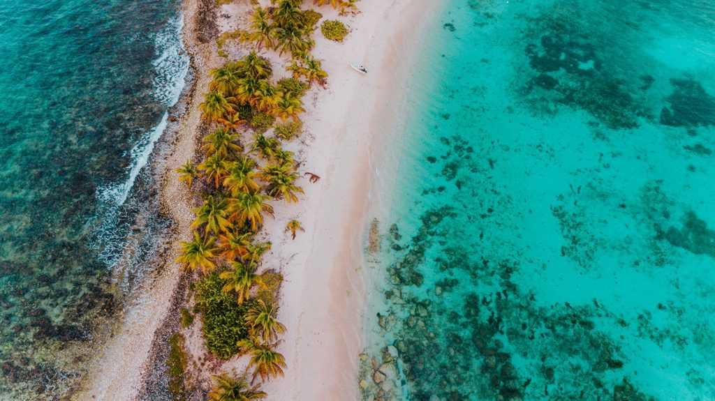 Легкость и прозрачность процедуры получения гражданства Гренады