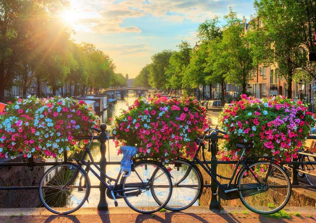 Недвижимость Нидерландов