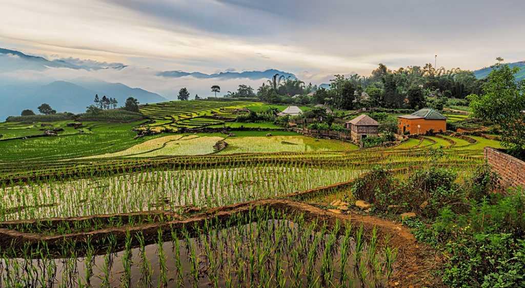 Вьетнам пытается предотвратить участие в программах CBI